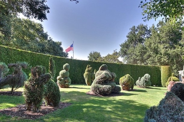 Hedges and Topiaries