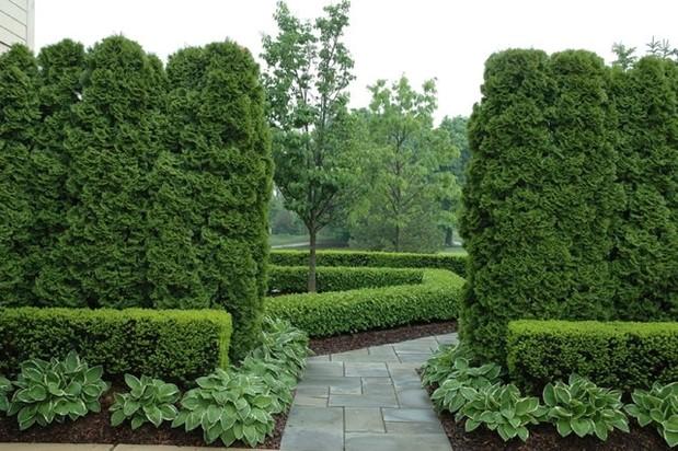 Grandiose Hedges